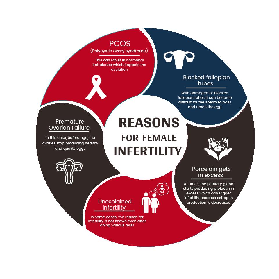 reasons female infertiltiy