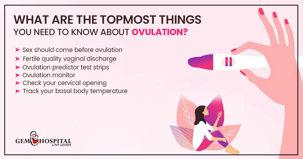 What are the topmost things you need to know about ovulation