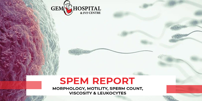 Spem Report - Morphology, Motility, Sperm count, viscosity & Leukocytes