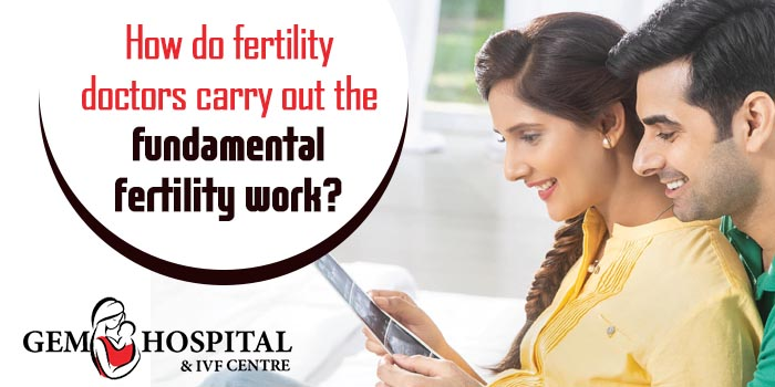 How do fertility doctors carry out the fundamental fertility work