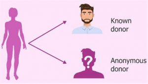 donor identity